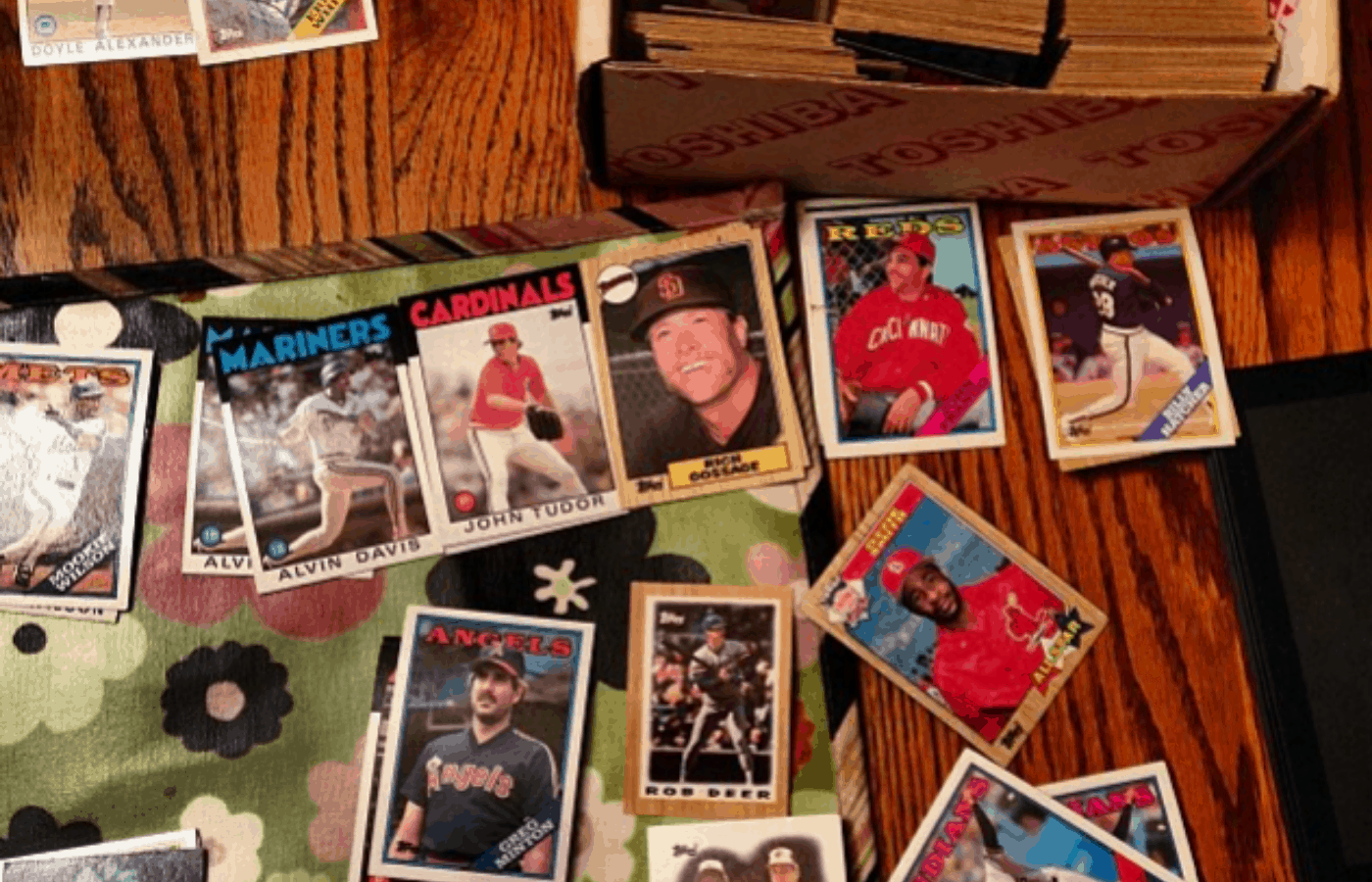 What's the Point of Baseball Cards? Do They Matter