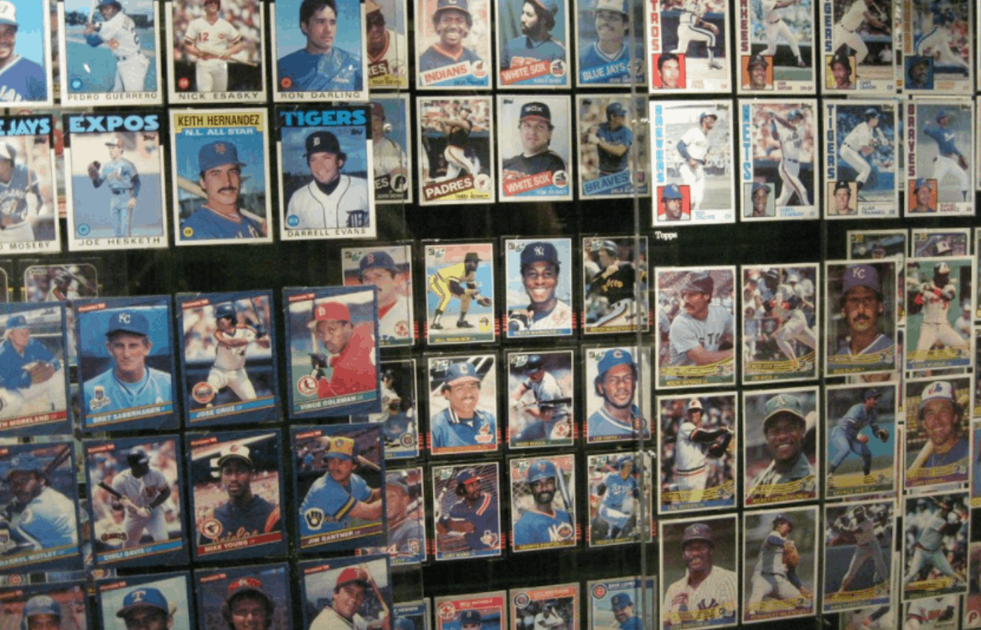 how to organize and store your sports card collection